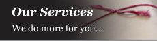 Our Services - We do more for you...